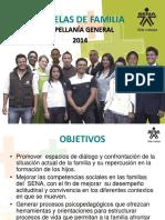 lineamientos ESCUELAS DE FAMILIA 2014.ppt