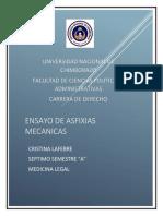 ENSAYO DE ASFIXIAS MECANICAS.docx