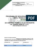 Plan de Seguridad y Salud en El Trabajo Jd Colors Servicios Generales e.i.r.l