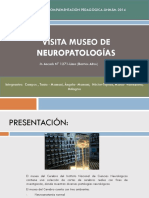 Museo de Neurociencias(Final)