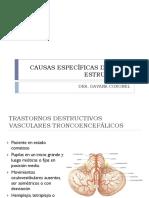 CAUSAS ESPECÍFICAS DE COMA ESTRUCTURAL POSTERIOR.pptx