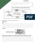 Guía de la  flotabilidad.docx