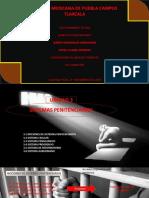SISTEMAS-PENITENCIARIOS.pptx (1).pptx