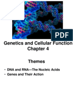 chapter 4 slide show