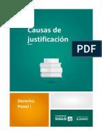 Causas de Justificación-M3 PENAL 1