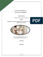 PAE_terminado (2).docx