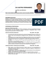 CV-JorgeCastroF (1).docx