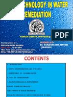 Nanotech in Water Remediation