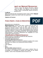 Project Report on Natural Resources.docx