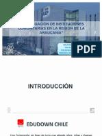Presentacion Edudown Chile