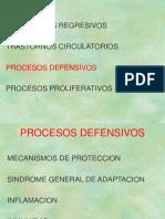 PROCESOS DEFENSIVOS1