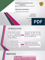 EXTINCION DEL PERMICO.pdf