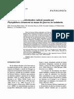 La Seca. Estudio (BSVP-29-01-087-108)