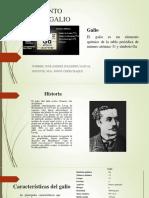 Libro Productos y Servicios Financieros Copia