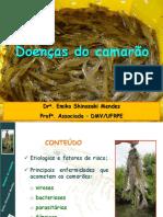 Doencas_do_camarao_Emiko_Shinozaki.pdf