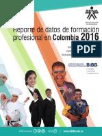 reporte_de_datos_bibb.pdf