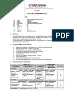 Auditoría Gubernamental i