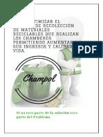 INFORME ARP.docx
