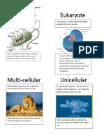robert saumur - characteristics of organisms