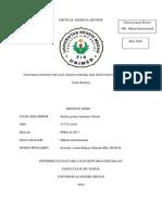 CJR hukum inter Karlin.docx