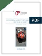 INFORME DE CALICATA.docx