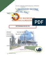 245440664-DETERMINACION-DE-Ph-de-Alimentos.doc