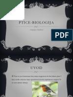 ptice-biologija-180501095516
