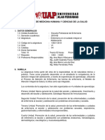 SILABO ENFERMERÍA EN EL CUIDADO INTEGRAL AL ADOLESCENTE.docx