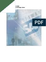 SAP_ALV_Treinamento ALV_Por.doc