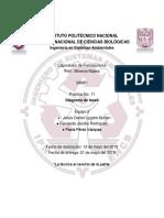 Determinación de diagrama de fases para una sustancia pura