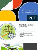 4.3 Fundamentos de biomecánica