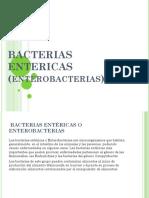 Bacterias Entericas