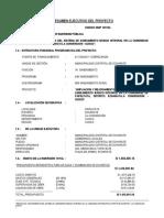 Ficha Resumen Papelpata
