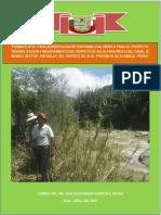 formato-anexo-06-estudio-hidrologico-canal EL MANGO.docx