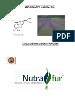 2012-01-24-AntioxidantesEnNaturaleza-AislamientoIdentificacion.pdf