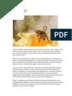 bee happy  - opinon writing