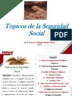 SESION 7 - Topicos de la Seguridad Social Capfiscal 2017 (1).pdf