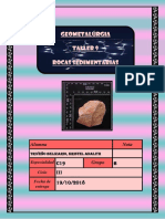 Lab 9 Determinacion de Rocas Sedimentarias_triveño Belizario