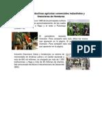 actividades productivas agrícolas comerciales industriales y financieras de Honduras.docx