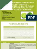 Exportacion de Limon a Estados Unidos Ppt3