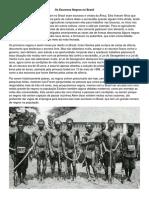 Os Escravos Negros no Brasil.docx