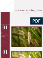 Exercícios de fotografia - Lucca Luiz Cardoso.pdf