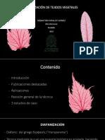 Seminario de diafanización de tejidos vegetales