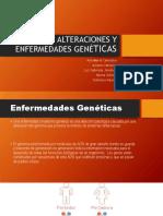 Las Alteraciones y Enfermedades Genéticas