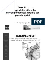 22. Patologia de los diferentes nervios perifericos. Paralisis del plexo braquial del adulto. paralisis braquial obstetrica - JG.pdf
