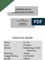 331160575 UDT Karina Astari