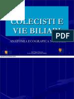 COLECISTI E VIE BILIARI definitivo.pdf