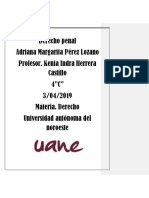 Derecho Penal Adriana Perez