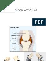Introdução a radiologia óssea