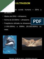 Principios Da Ultrassonografia